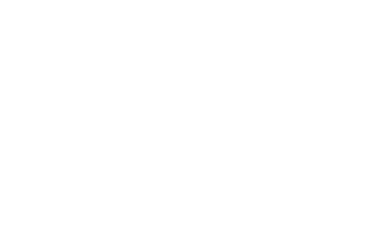 Logo World Wild Web blanc